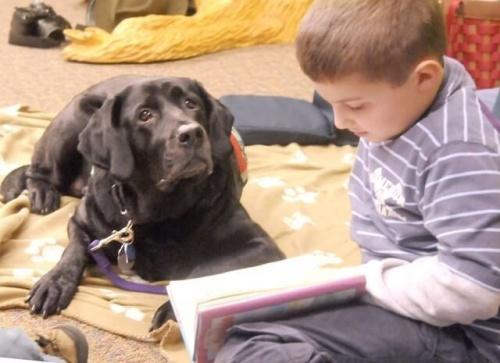 kitap okuyan çocuk ve köpeği