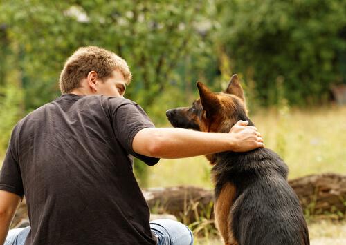 köpeğini takdir eden sahip