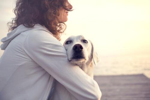 birbirine sarılmış köpek ve sahibi