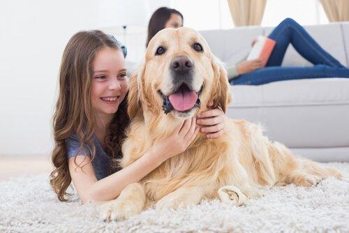 köpeğe sarılan çocuk