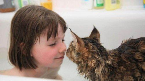 Otizmli Küçük Kız İle Kedisi Arasındaki İnanılmaz Dostluk