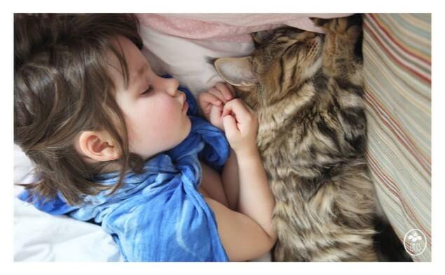Kedisi ile uyuyan kız