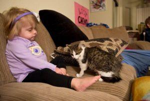 küçük-kız-ile-üç-ayaklı-kedinin-dostluğu