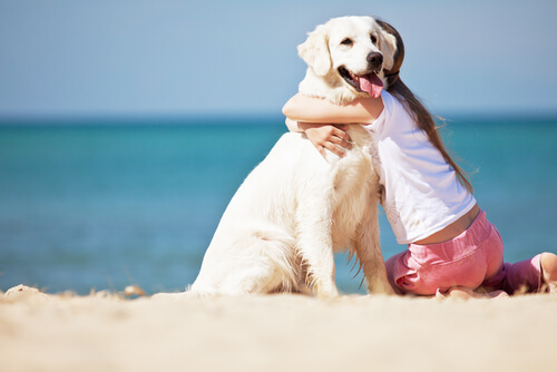 köpeğe sarılan kız çocuk