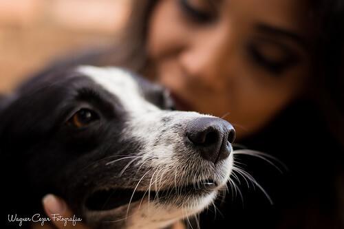 kadın ve köpeği