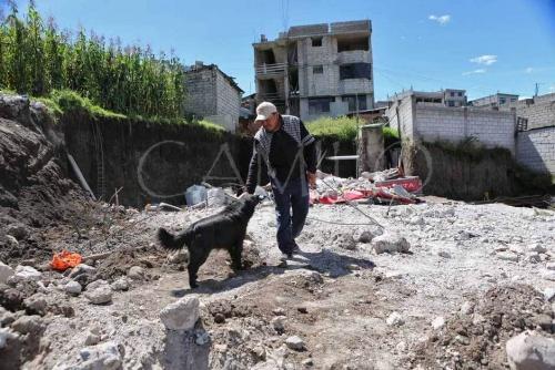 deprem sonrası sahibi köpek