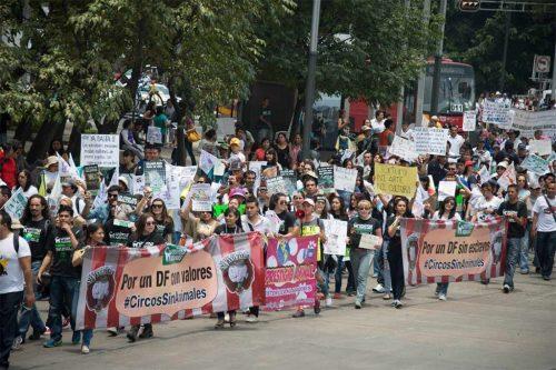 Meksika hayvan hakları yürüyüşü