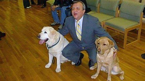 11 Eylül Saldırılarında Sahibinin Hayatını Kurtaran Rehber Köpek