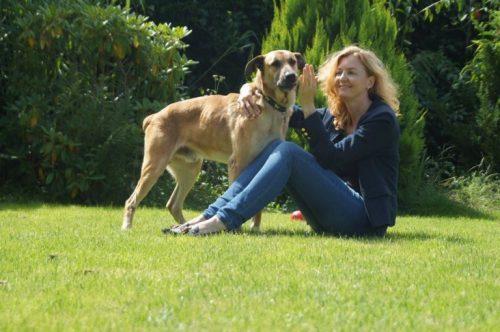 Sokak Köpeği Sahiplenen Hostes: Olivia ve Rubio