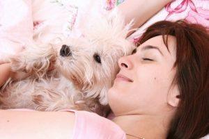 köpekle uyunur mu?