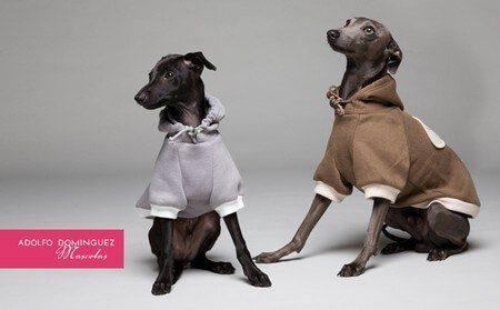 Adolfo Dominguez'in Köpek Giyim Koleksiyonu
