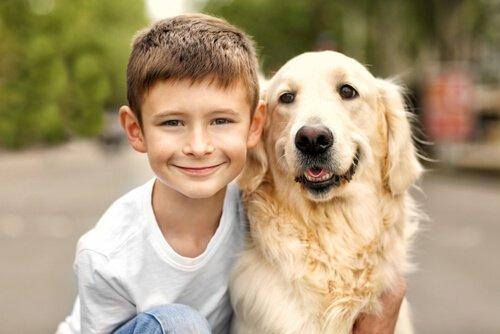 Aile Dostu Köpek Irkları