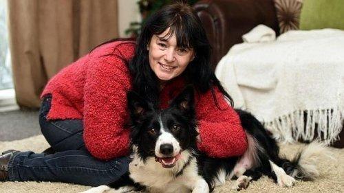 Köpekler Kanserli Hastaları Kurtarmanın Anahtarıdır