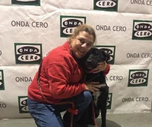 kızıl haç terapi köpeği