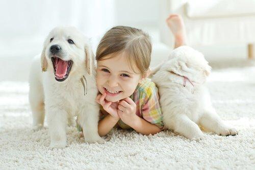 Evcil Hayvanlar Çocuk Sağlığına Faydalı