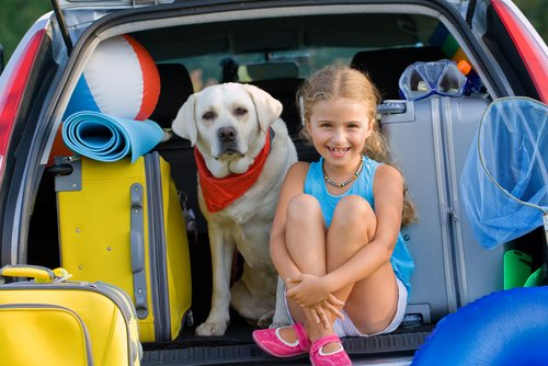 tatil köpek ve çocuk