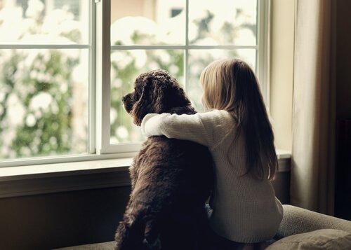 Hayvan Destekli Terapi İşe Yarıyor