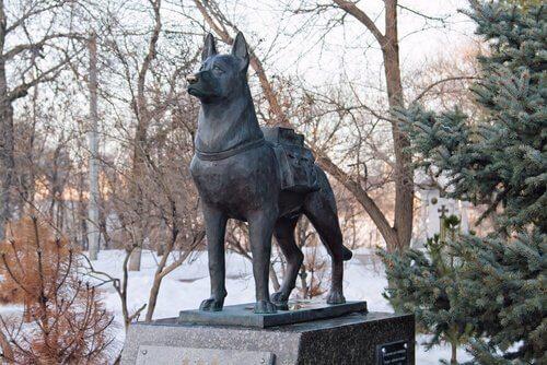 köpek heykeli
