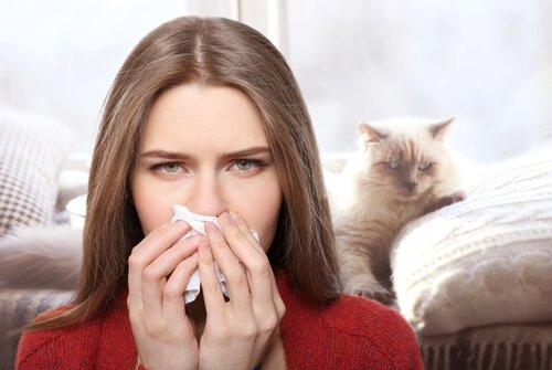Kedi Alerjisinin Tedavisi Var Mı?