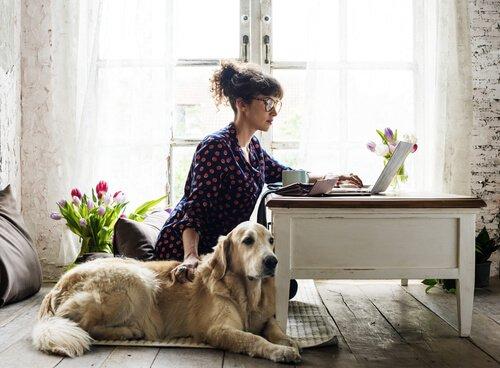 Evcil Hayvan Sahiplenmeye Hazır Mısınız?