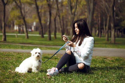 köpek ve telefonla uğraşan kadın
