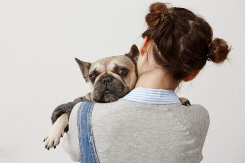 köpeğine sarılan insan