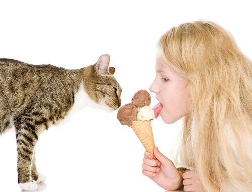 dondurma yiyen kedi ve kız