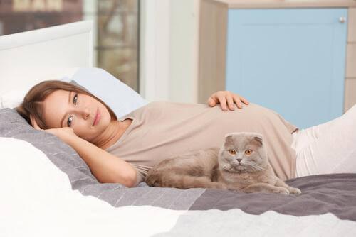 yatakta yatan hamile kadın ve kedi