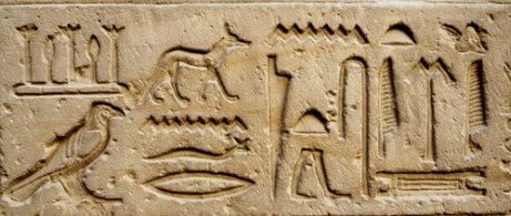 antik mısırda köpekler