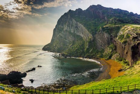 jeju adası
