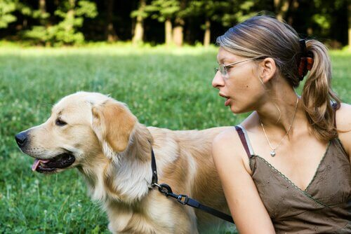 Köpeğiniz Sizi Dinlemiyor Mu? Bu ipuçlarını deneyin!