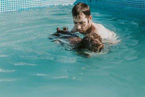 köpeğiyle havuzda yüzen insan