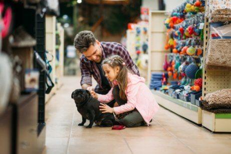 evcil hayvanlarla alışveriş yapmak
