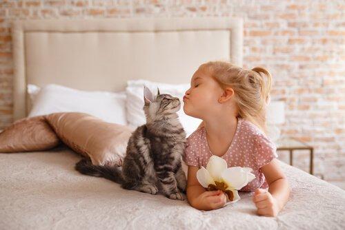 yavru kedi ve çocuk