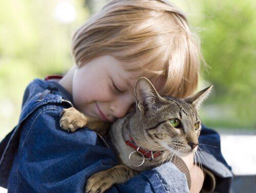 Çocukların Kedilerden Öğrenebileceği 5 Ders