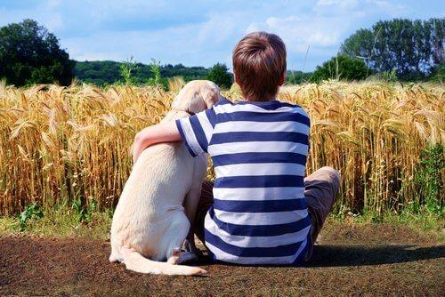 köpek korkusu yaşamayan çocuk