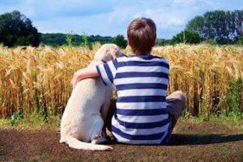 köpek ve çocuk dost