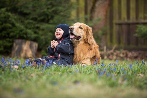 Çocuklar için En İyi Köpek Türleri