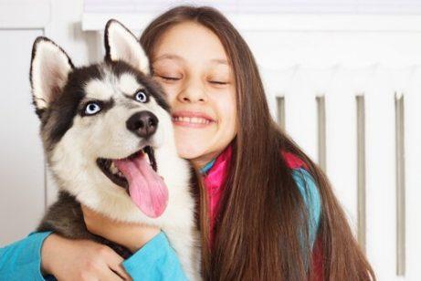 sibirya kurdu ve kız