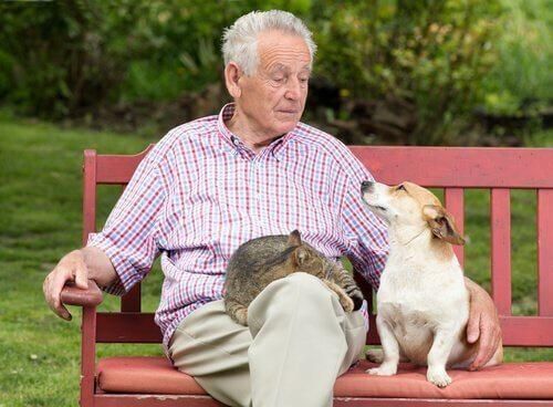 Evcil Hayvan Sahibi Olmak İnsan Ömrünü Uzatıyor