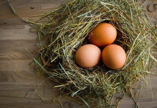 üç yumurta