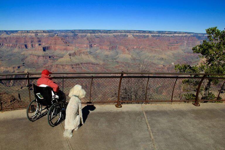 yaşlı kadın ve köpek