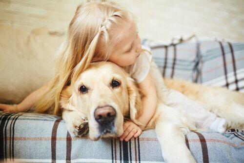 çocuk ile sarılan köpek