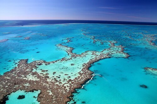 Avustralya'daki mercan resifi