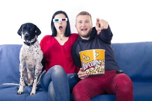 Köpeğinizle İzleyebileceğiniz Film Önerileri