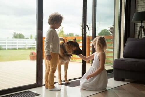 kız ve erkek çocuk köpek etkileşim