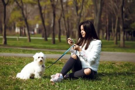 çimde oturan kadın ve köpeği