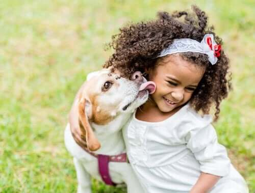 Çocuklar Köpekler İle Nasıl Etkileşim Kurmalı?