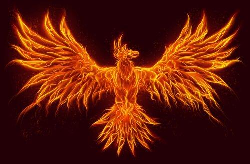 ateş anka kuşu