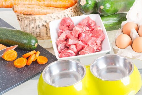beslenme düzeni protein